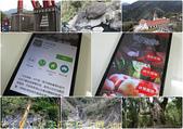 新竹縣尖石鄉公所「尖石探秘」APP 超級好用 20151230:尖石探秘 手機 App.jpg