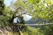 神山瀑布 20190924:IMG_0717.jpg
