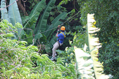 泰國普吉泰山森林滑翔園區,叢林飛躍體能挑戰 42關 20160208 :IMG_6839.jpg