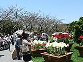 2011/04/24 花博倒數第二天, 最後的一個週日, 天氣晴, 人人山人海:P1020513.JPG