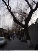 中國北京南鑼鼓巷 2010/02/11:P1000821.JPG