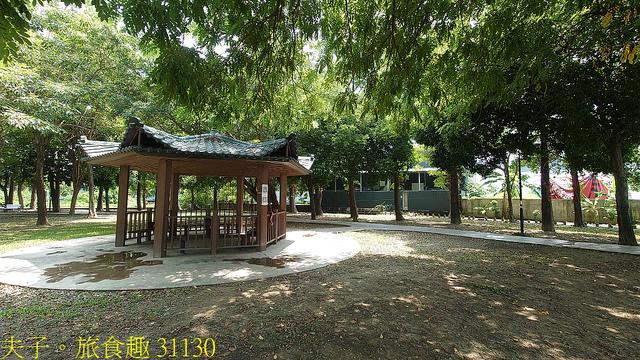 31130.jpg - 高雄梓官梓平公園砲彈樹 20210924