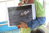 台江國家公園 - 台江觀光船悠遊四草湖 20150924:IMG_5690.jpg