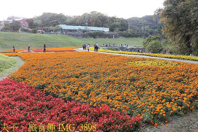 IMG_3898.jpg - 內湖大溝溪生態園區 春節走春看花海 20210131