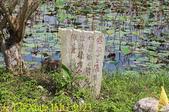 大漢溪山豬湖生態親水園區 20181107:IMG_9123.jpg