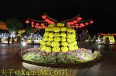 越南峴港 APEC 公園 20200122:IMG_0371.jpg