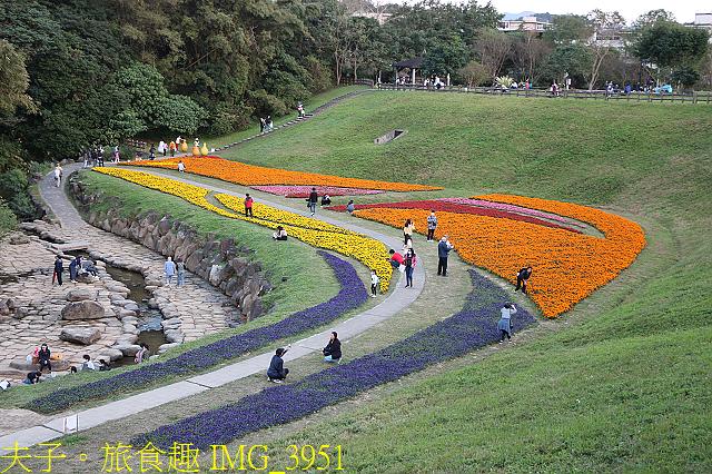 IMG_3951.jpg - 內湖大溝溪生態園區 春節走春看花海 20210131