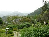台北坪林石雕公園:P1110211.JPG
