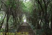 [馬祖新秘境] 北竿 夾竹桃龍貓隧道 (42據點) 20180610:IMG_2740.jpg