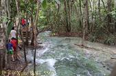 泰國喀比翡翠池 Emerald Pool krabi  20160206:IMG_5565.jpg
