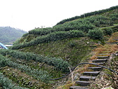 台北坪林石雕公園:P1110189.JPG