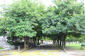 中正大學 20190907:IMG_1873.jpg