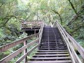 桃園上巴陵拉拉山 (達觀山) 2009/11/26 :P1050550.JPG