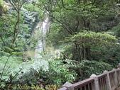 陽明山絹絲瀑布 2013/09/09:IMG_4310.jpg