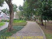 台北市 木柵公園 萃湖 20190602:IMG_20190602_075934.jpg