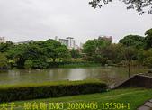 台灣大學生態池 複刻瑠公圳水源地 20200406:IMG_20200406_155504-1.jpg