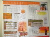 冬蟲夏草之偶見 2011/10/10 於台北三峽遠雄社區:P1090233.JPG