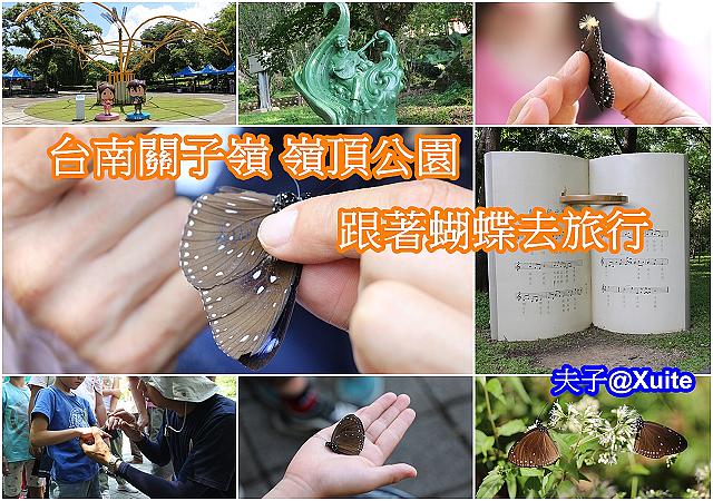 蝴蝶標放-1.jpg - 台南關子嶺 嶺頂公園 蝴蝶標放 20190714