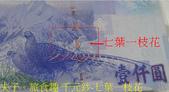 新北市瑞芳區 夢幻瀑布 20200317:千元鈔-七葉一枝花.jpg