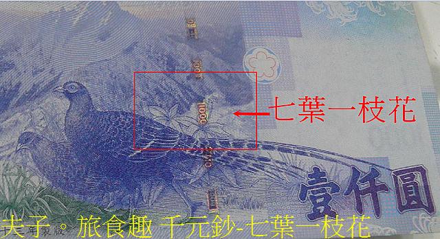 千元鈔-七葉一枝花.jpg - 新北市瑞芳區 夢幻瀑布 20200317