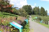 福壽山農場 20191005:IMG_3232.jpg
