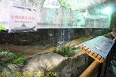 2021年 武陵農場 山櫻花、紅粉佳人 繽紛綻放 20210214:IMG_4564.jpg