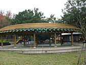 桃園市虎頭山公園整修完成+楓香紅了 2011/01/13:P1110932.JPG