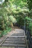 台北市四獸山 - 象山看 101 夜景:IMG_0401.jpg