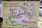 2021年 武陵農場 山櫻花、紅粉佳人 繽紛綻放 20210214:IMG_4624.jpg
