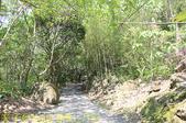 阿里山鄒阿兜智慧文化角 - 達娜伊谷自然生態公園 20190424:IMG_7153.jpg