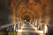 苗栗後龍 好望角 過港隧道  過港貝化石層 20201025:IMG_1768.jpg