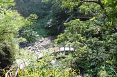 神山瀑布 20190924:IMG_0763.jpg