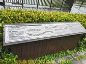台灣大學生態池 複刻瑠公圳水源地 20200406:IMG_20200406_155637.jpg