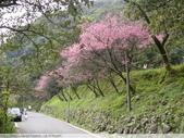 汐止彌勒山天道清修院 2011/03/14 :P1010702.JPG