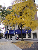 20101023 Nazareth College, Pittsford NY USA:DSC04640.JPG