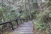 谷關捎來步道 谷關七雄老四-波津加山步道 暖身路段 20150221:IMG_3567.jpg
