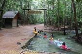 泰國喀比翡翠池 Emerald Pool krabi  20160206:IMG_5569.jpg