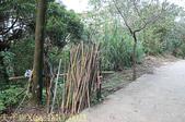 基隆市七堵姜子寮山登山步道 2015/10/29:IMG_0025.jpg