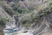 新竹尖石鄉北角吊橋到司馬庫斯 2013/10/29 :IMG_5339.jpg