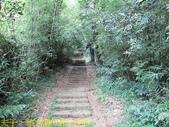 陽明山國家公園 面天山 - 向天山步道 向天池、向天山、面天山 20200916:IMG_6056.jpg