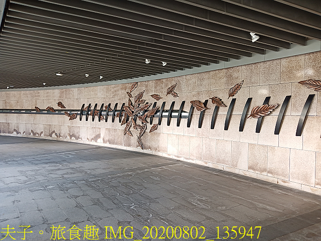 IMG_20200802_135947.jpg - 台北市大安森林公園 20200802