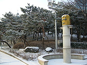 Korea 韓國 下雪 2009/01/23-27 :P1020955.JPG