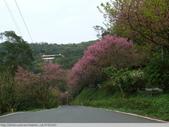 汐止彌勒山天道清修院 2011/03/14 :P1010715.JPG