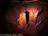 新北市汐止內溝山登山步道- 翠湖 & 內溝山 20150514:IMG_0403.jpg