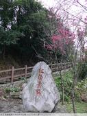 桃園龍潭大平村大平紅橋 and 入口伯公廟 2011/02/18:P1010219.JPG