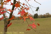 2014楓石門 野餐日 (桃園石門水庫 南苑公園) 2014/12/13:IMG_9644.jpg