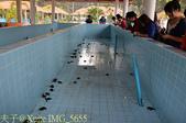 泰國攀牙海龜生態保育中心 20160207:IMG_5655.jpg