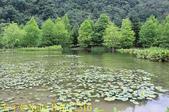 苗栗 南庄雲水度假森林 20190603 :IMG_1316.jpg