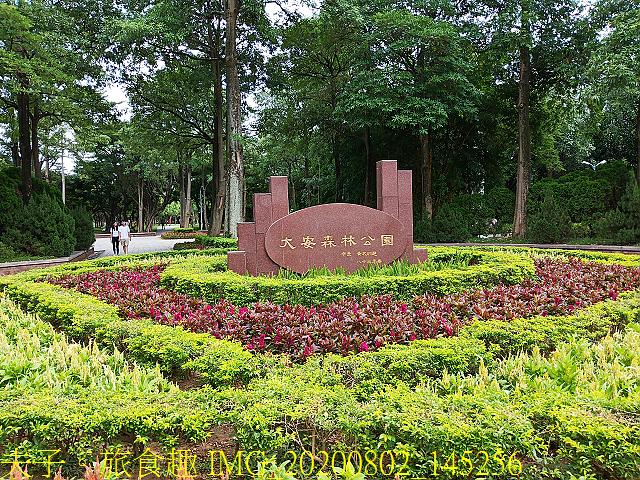 IMG_20200802_145256.jpg - 台北市大安森林公園 20200802
