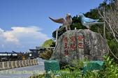 省道台9線 蘇花公路段 粉鳥林 20160705:_DSC3394.jpg